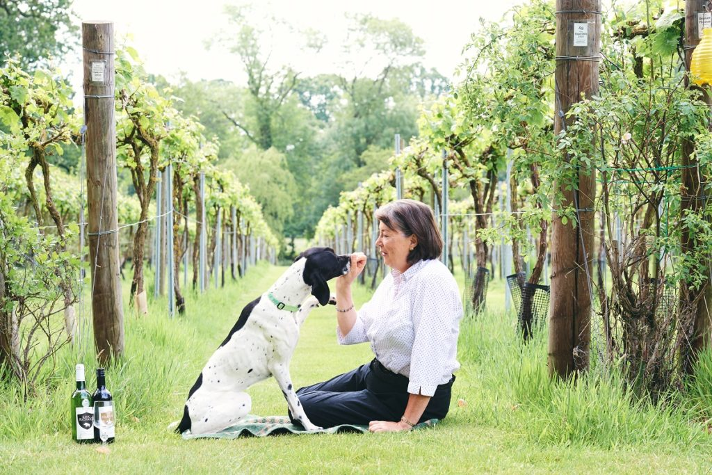 Liz Robson Rothley Wine Estate English Wine
